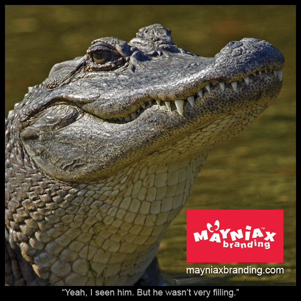 "Mayniax Branding, Alligator - ""Yeah, I seen him. But he wasn't very filling."""